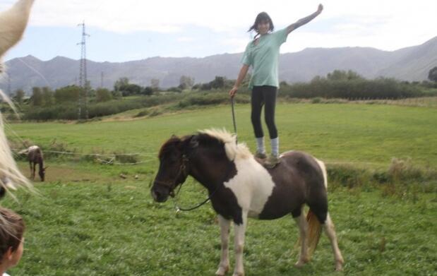 Paseo a caballo o clases equitación