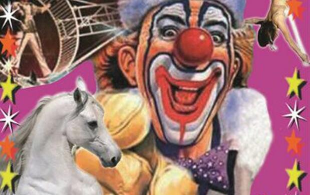 Disfruta del circo esta Navidad