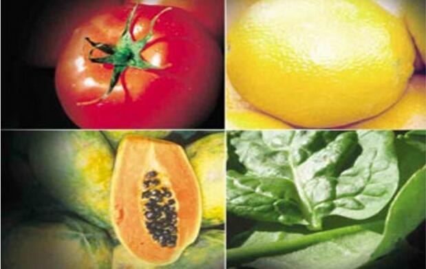 Dieta personalizada con un nutricionista