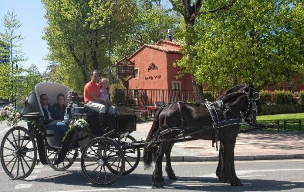 Paseo en coche de caballos para 4 personas