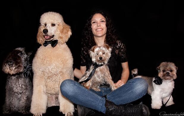 Tratamiento keratina para tu perro