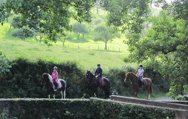 Paseo a caballo o clase de equitación