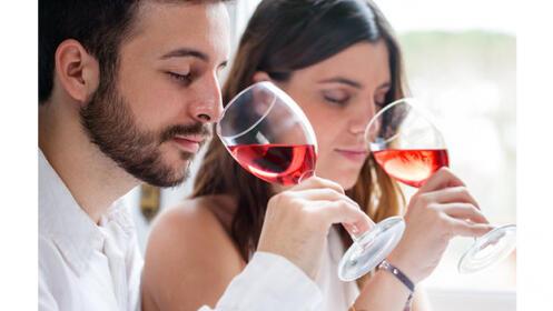 Curso Online de Cata de Vinos, Maridaje y Sumiller