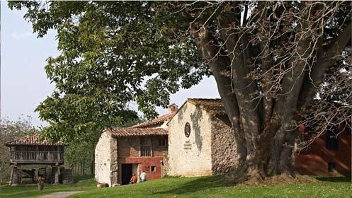 Museo Etnográfico del Oriente de Asturias